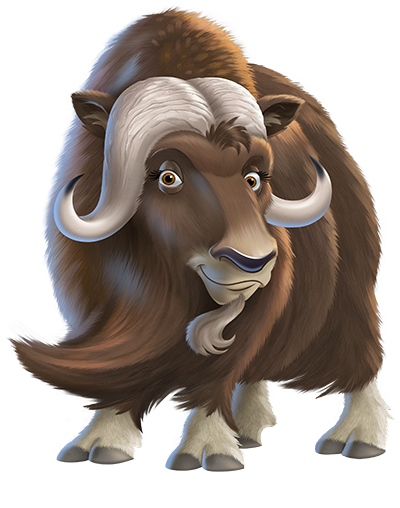 Shaggy the Muskox