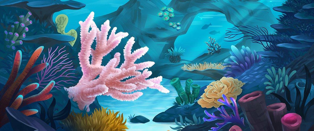 Coral Shimmer