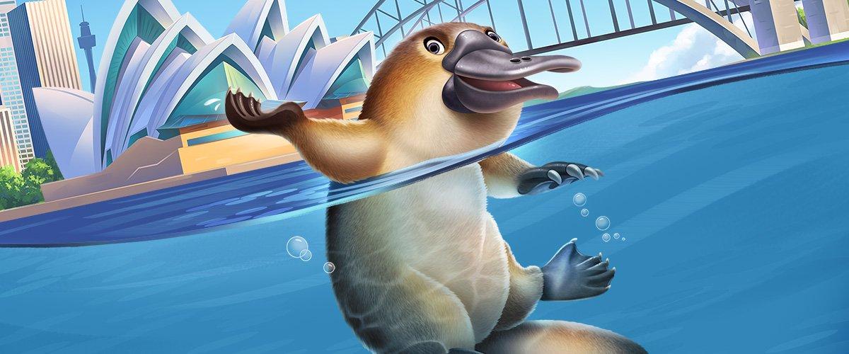 Platypus Bill
